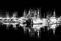 Harbor Night